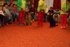 064_kutyak